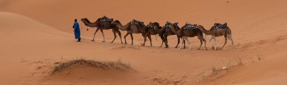 keliones-i-egipta-kelioniu-studija